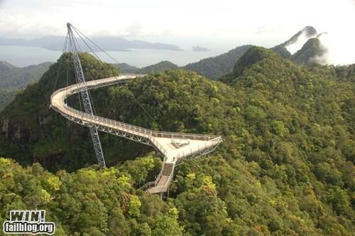 architecture bridge design Forest swag - 5834996224