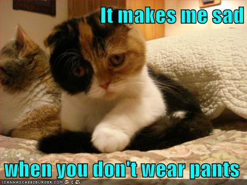 cannot unsee caption captioned cat dont gross pants Sad wear when you - 5835017984