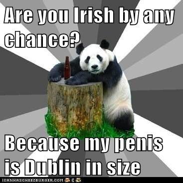 doubling Dublin flirting innuendo Ireland p33n panda Pickup Line Panda pickup lines puns size - 5835354624