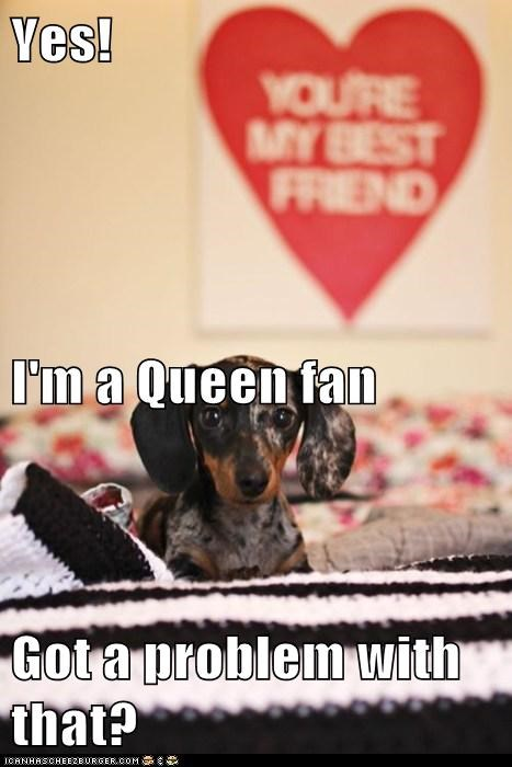 Yes! I'm a Queen fan Got a problem with that?