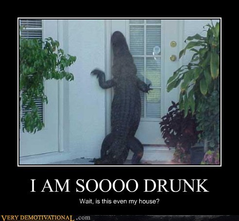 alligator,drunk,house,Pure Awesome
