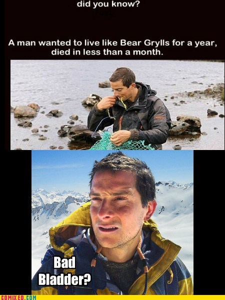 bear grylls,bladder,did you know,imposter,meme,the internets