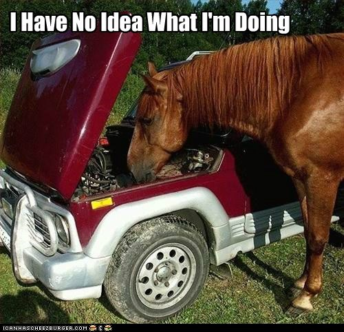 caption car care cars horse i-have-no-idea-what-im-d i have no idea what im doing mechanic truck what