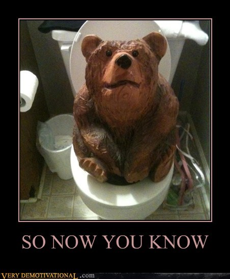 bear hilarious poop toilet