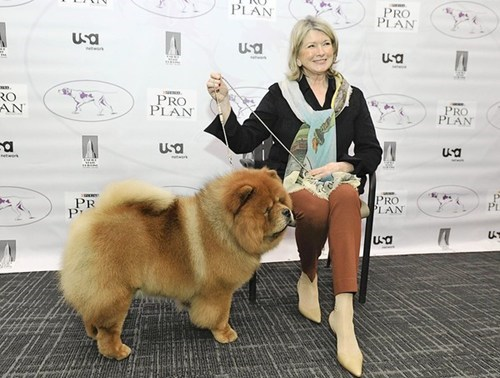 chow chow,ghenghis khan,Lifestyle of the Rich and Famous,Martha Stewart,Westminster Dog Show