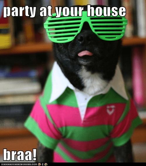 Black Lab clothing labrador retriever Party party time sunglasses tongue tongue out - 5837990144