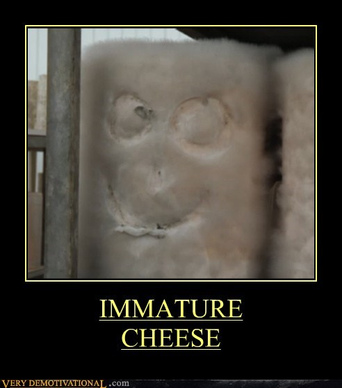 cheese eww mold Terrifying
