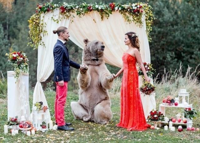 matrimonios geniales