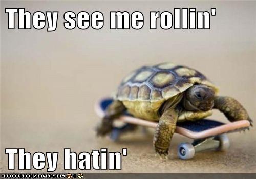 rollin-hatin skateboard skating they hatin they see me rollin they-see-me-rollin-they-hatin turtle - 5839159552