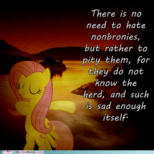 best of week fluttershy meme nonbronies saint fluttershy - 5839505664