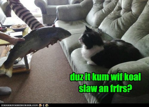 duz it kum wif koal slaw an frfrs?