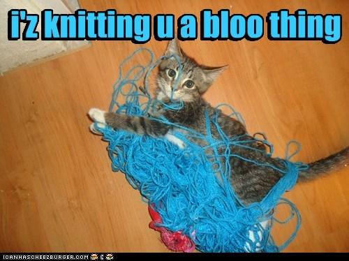 i'z knitting u a bloo thing i'z knitting u a bloo thing