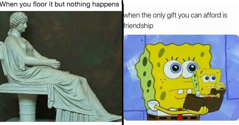 random memes SpongeBob SquarePants funny memes relatable memes the simpsons animal memes Cats cat memes - 5840133