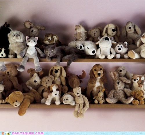 acting like animals blending in cat Hall of Fame hiding stuffed animals wheres waldo - 5840648960