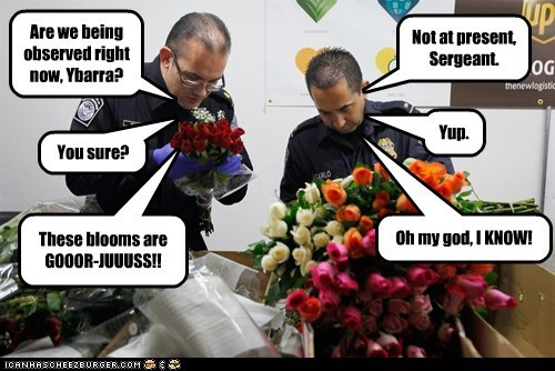 Are we being observed right now, Ybarra? Not at present, Sergeant. These blooms are GOOOR-JUUUSS!! Oh my god, I KNOW! You sure? Yup.