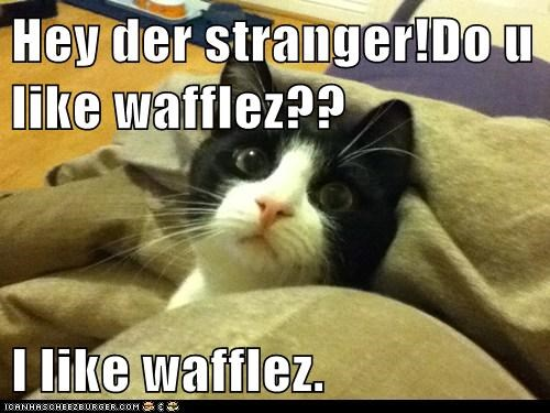 Cheezburger Image 5841993472