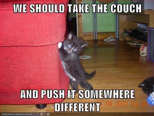 caption captioned cat couch different kitten meme move patrick pushing SpongeBob SquarePants take - 5842062336
