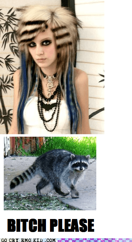 raccoon scene girl trash weird kid