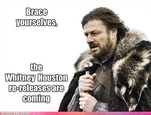 funny,imminent ned,meme,sean bean,whitney houston