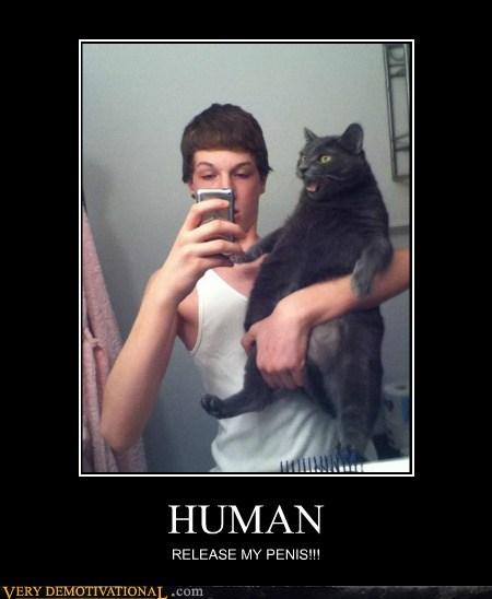cat hilarious human no no tubes wtf - 5843268096