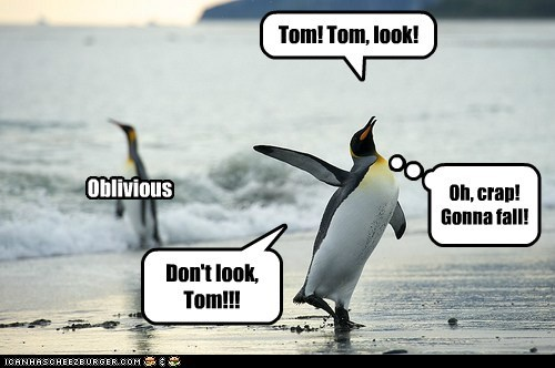 Tom! Tom, look! Oh, crap! Gonna fall! Oblivious Don't look, Tom!!!