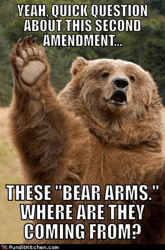 bears Hall of Fame political pictures second amendment - 5843433984