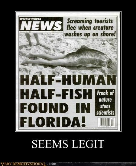 fish hilarious human seems legit wtf - 5843465216