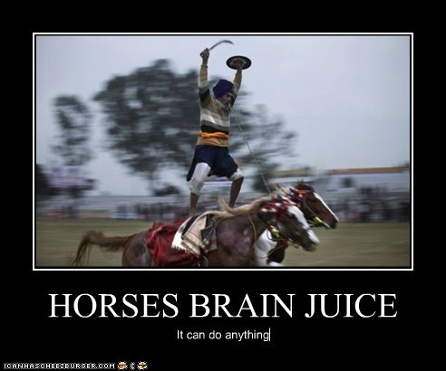 HORSES BRAIN JUICE It can do anything