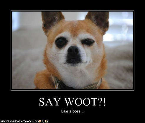 SAY WOOT?! Like a boss...