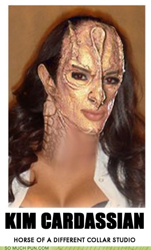 cardassian double meaning Hall of Fame kim kardashian literalism shoop Star Trek - 5843584000