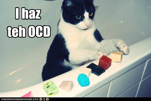 caption captioned cat i has ocd - 5843599360