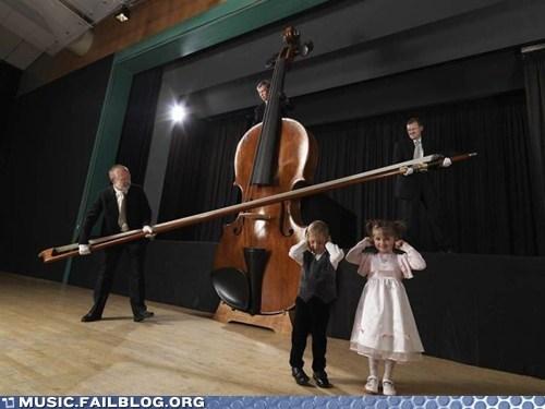 bass classical instrument - 5843842560
