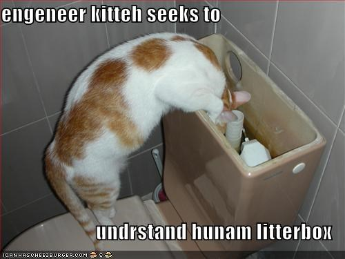 engineers litter box lolcats toilets - 584426240