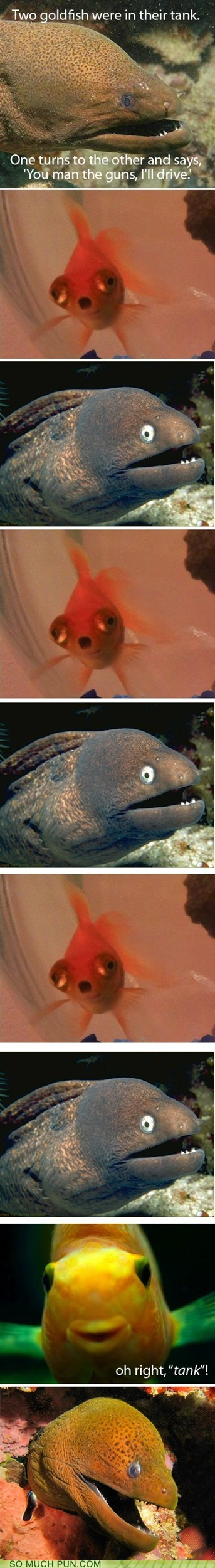 Bad Joke Eel cliché double meaning goldfish Hall of Fame ICWUDT meme reaction tank