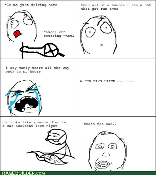 accident,animals,Death,Rage Comics