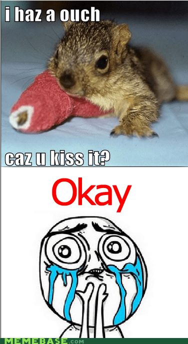 cast,KISS,ouch,Rage Comics,squee,squirrel