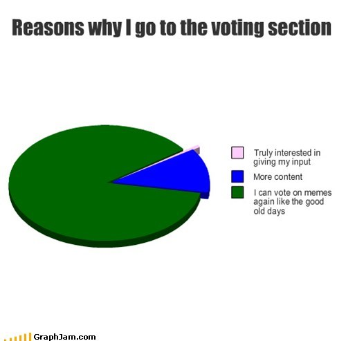 Reasons why I go to the voting section