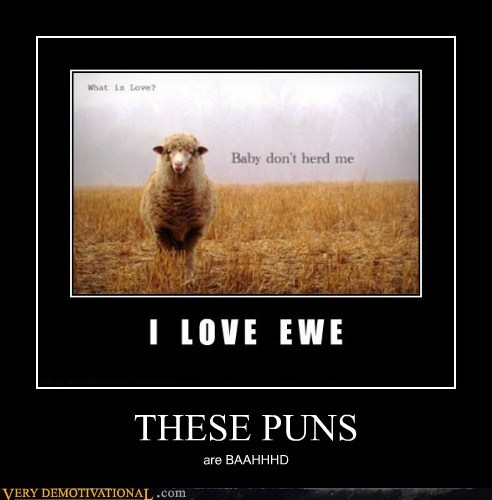 ewe hilarious pun sheep - 5845631232