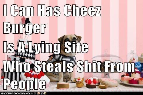 Cheezburger Image 5845870080