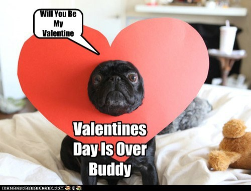 Will You Be My Valentine Valentines Day Is Over Buddy