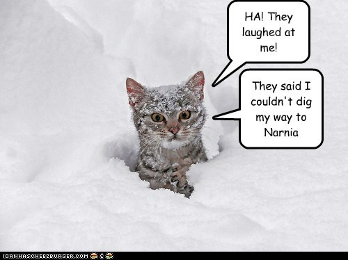 HA! They laughed at me! They said I couldn't dig my way to Narnia