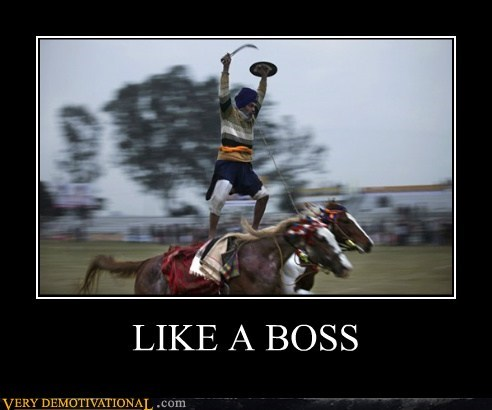 boss,crazy,horse,Pure Awesome,riding,wtf