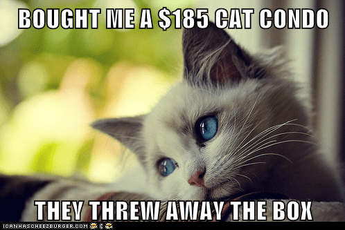 boxes cat condo cat tower Cats complaining expensive first world cat problems First World Problems whining - 5848514560