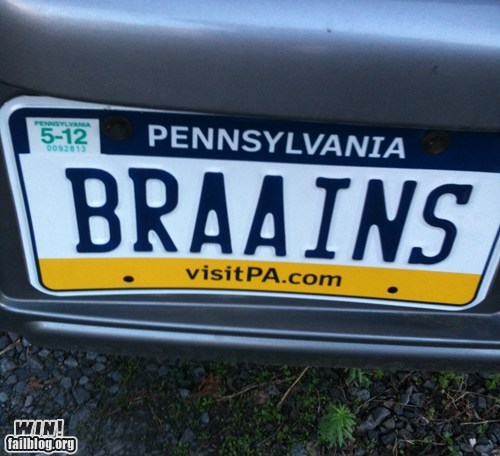 car driving license plate zombie - 5848966912