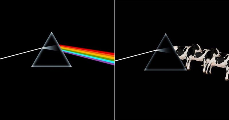 albums Dark Side of the Moon pink floyd album cover funny tweets eminem slim shady The Sims michael jackson Justin Timberlake Music adele pop music the fugees - 5849093