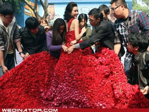 China funny wedding photos Hall of Fame roses wedding dress - 5849141248