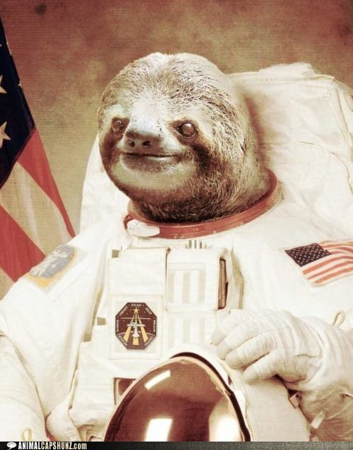 astronaut caption contest outer space sloth space