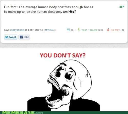 body bones humans Rage Comics skeletons - 5849657088