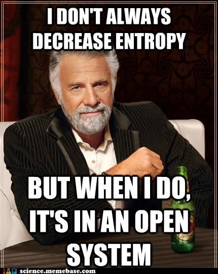 entropy open system physics wtf - 5850724352