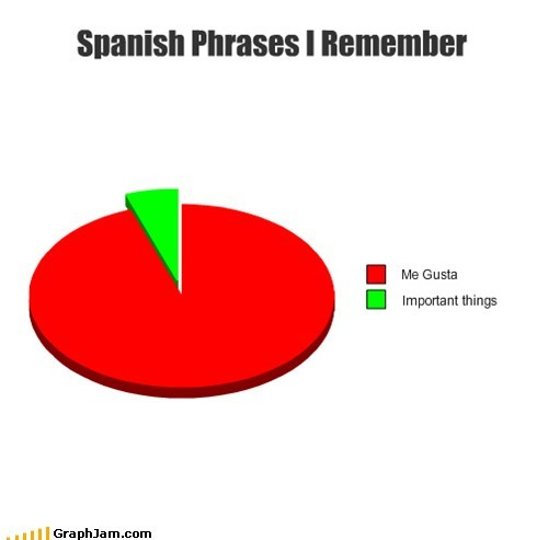 foreign language,me gusta,Pie Chart,spanish